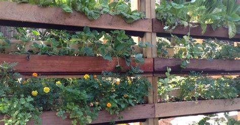 diy vertical garden made out of pallets and woolen mesh