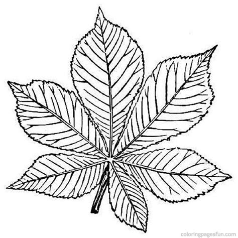 tree leaf coloring pages free coloring pages leaves az coloring pages