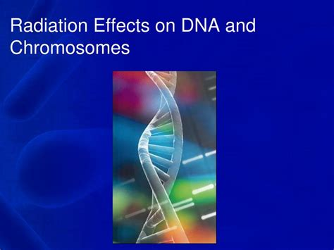 ppt radiation effects on dna and chromosomes powerpoint