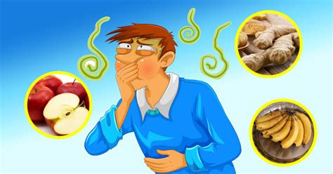 food poisoning the best remedies for food poisoning