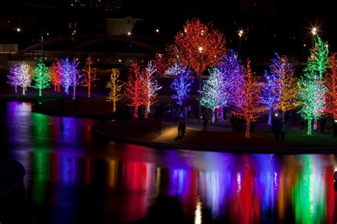 trees wrapped in led lights for christmas limbaugh
