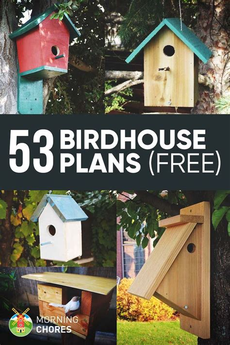 diy bird house bird feeder plans