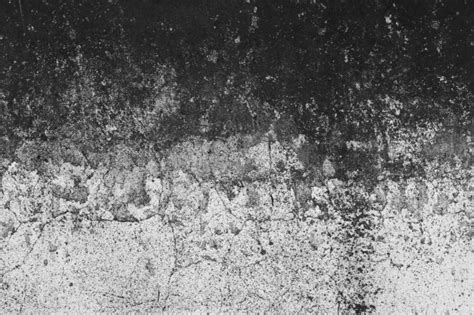 gradient black and white wall photo free