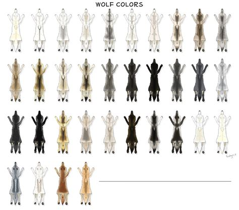 what color are wolves wolf pelt colors by pookyhorse on deviantart