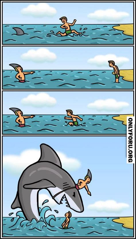 libro smart about sharks jaws prank funny lol fun humor rofl lmfao cute gif troll hilarious