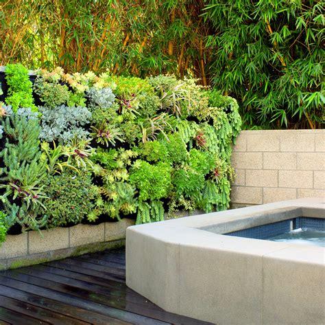 succulent spa vertical garden florafelt vertical garden