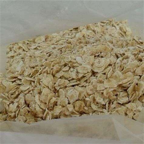 whole grains quotations whole grain rolled oats for sale buy instant oats rolled