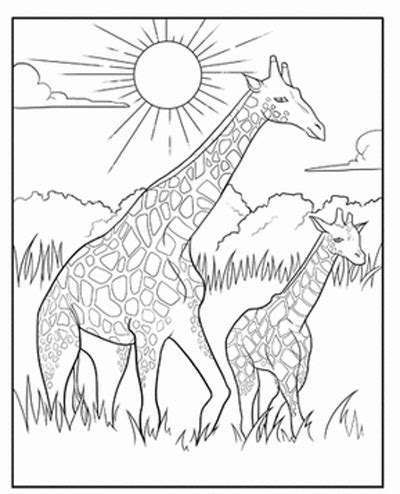 giraffe coloring page for adults elderly colouring pages page 2 sketch coloring page