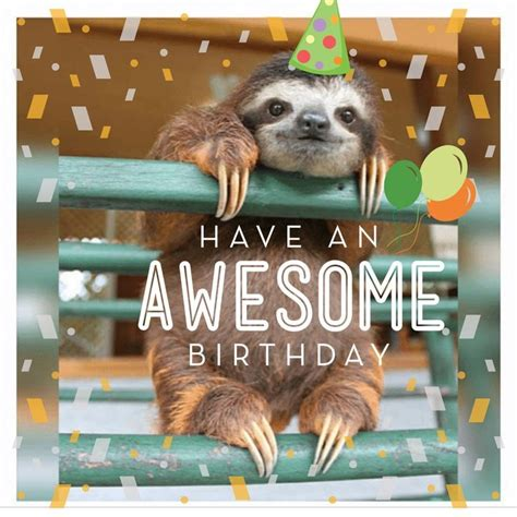Sloth Happy Birthday Meme