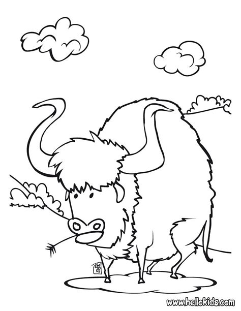 cowboy coloring pages buffalo