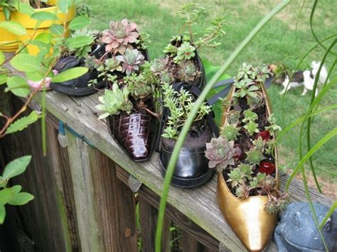 Shoe Planters by Sensational Shoe Planters The Micro Gardener