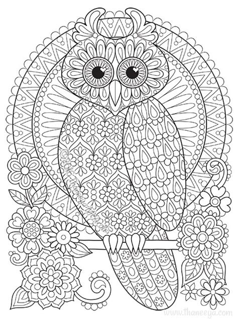 screech owl coloring page more pages to colour screech owl coloring page