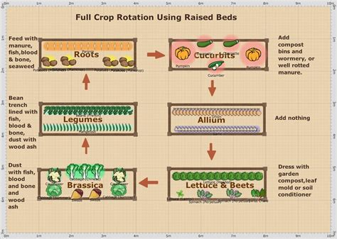 vegetable garden crop rotation garden ftempo