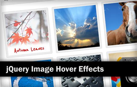 icon hover effects responsive jquery 12 jquery image hover effects exles and plugins