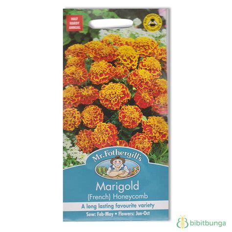 Benih Bunga Marigold T1310 benih marigold honeycomb 60 biji mr fothergills bibitbunga