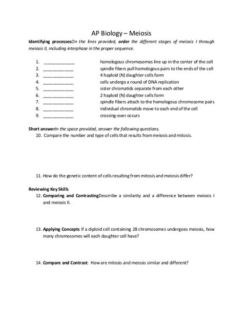 Meiosis Worksheet Answers by Meiosis Worksheet Answer Key Lesupercoin Printables