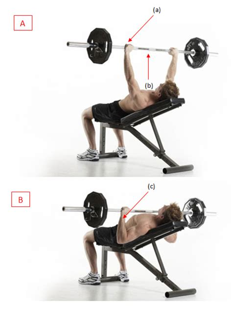 correct incline bench press form how to get get rid of belly fat incline bench press form