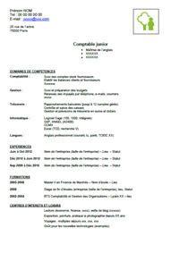Cabinet Comptable En Anglais by Exemple De Cv De Comptable