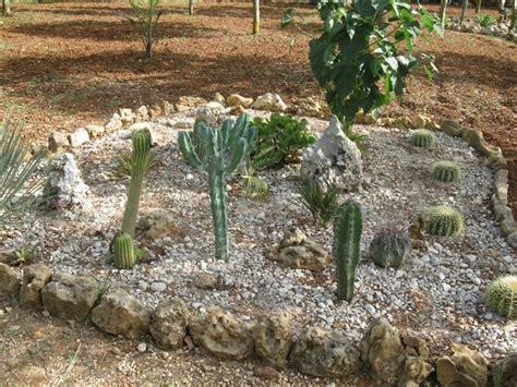 foto giardino roccioso come decorare il giardino con i sassi foto nanopress donna