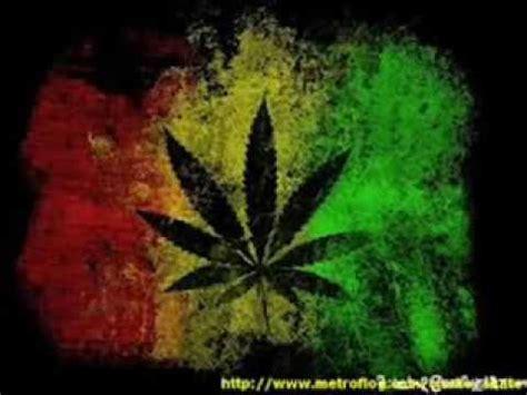 imagenes de weed reales resistencia suburbana por cultivar marihuana letra youtube