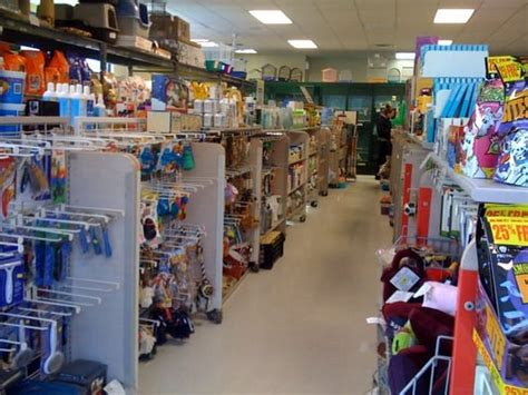 puppy stores in ma wilmington pet garden supply pet stores wilmington ma reviews photos yelp