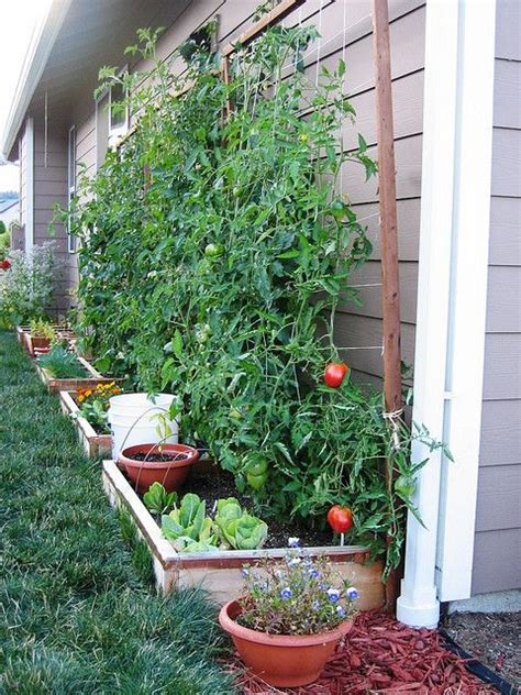efficient small space garden diy pinterest