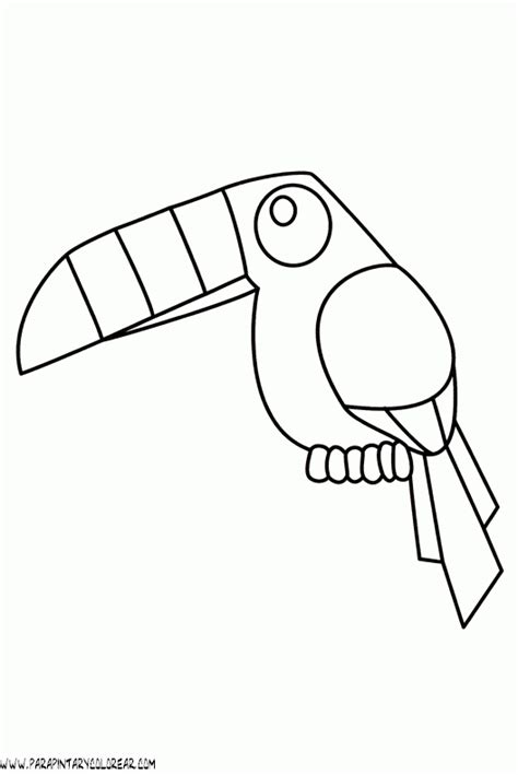 thanksgiving dinner plate coloring page bltidm