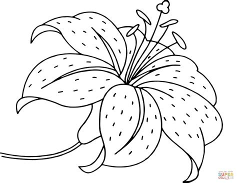 coloring pages of flowers flower coloring page free printable coloring pages