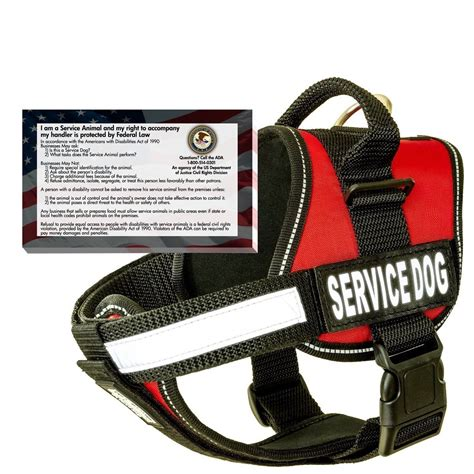 trained psychiatric service dogs for sale does a service to wear a service vest the effect
