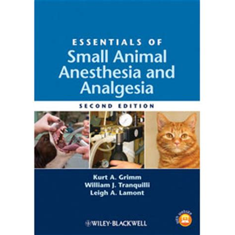 essentials of anesthesia books essentials of small animal anesthesia analgesia