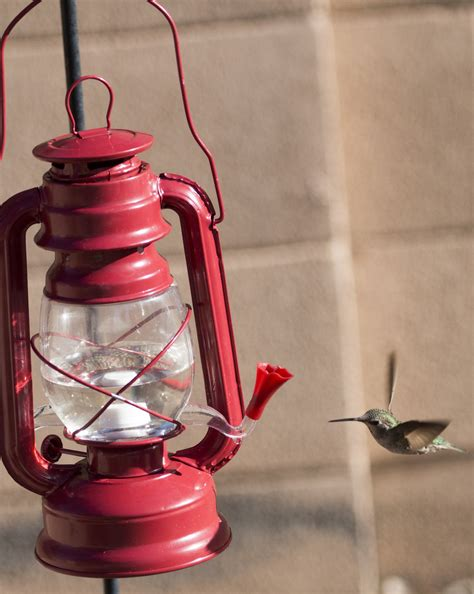 cool hurricane lantern hummingbird feeder we love