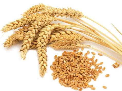 whole grains before bed 4 foods that should be eaten before bed fajar