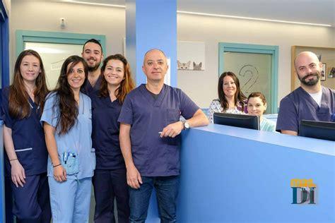 Tas Fashion Cewe Auris 256008 clinica veterinaria san jorge los mejores cuidados para su mascota categor 237 a