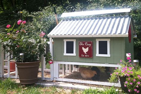 chicken coop ideas with small backyard chicken coops