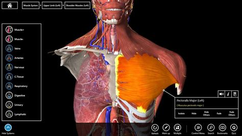 Human Anatomy the best 3d anatomy software to use for human research