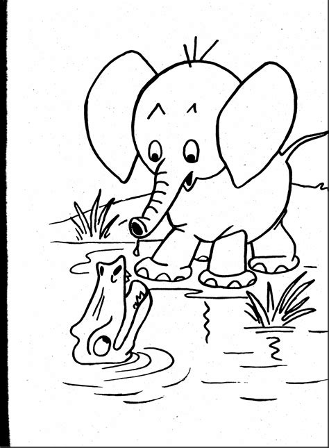 top baby elephant zoo animal coloring pages for kids with