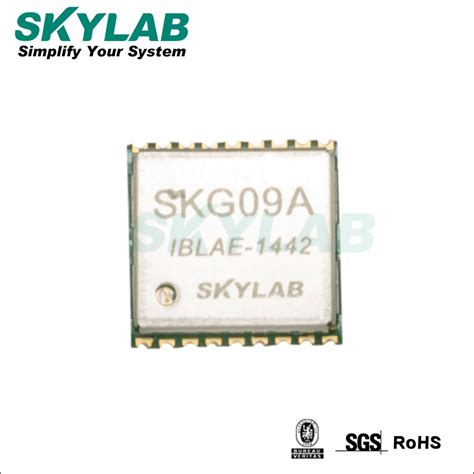gps tracking chip skylab smallest gps tracking chip smallest gps chip skg09a