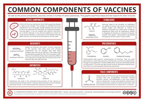 Modified Vaccine Definition by A Summary Of Common Vaccine Components Compound Interest