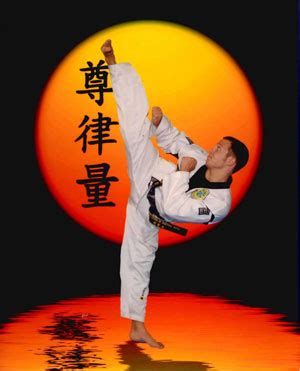master_mike2 – national school of martial arts – olympic
