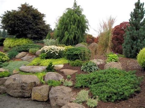 Best Plants For Rock Gardens Plants For Zone 4 Rock Gardens The Interior Design