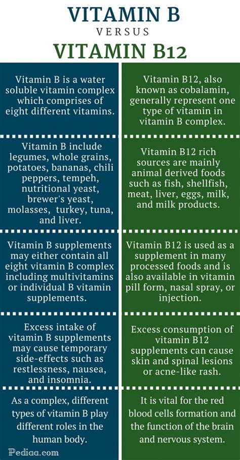 supplement vs vitamin difference between vitamin b and vitamin b12
