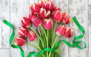 The Best Flowers 赤チューリップ 花束 花 リボン 壁紙 2560x1600 壁紙ダウンロード Ja Best