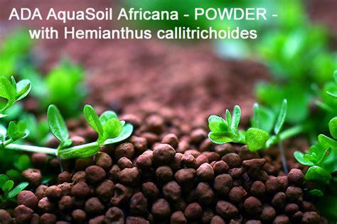 Evolution Aquasoil Aquatic Soil aquasoil africana photos of oliver knott s new set up substrates aquatic plant central