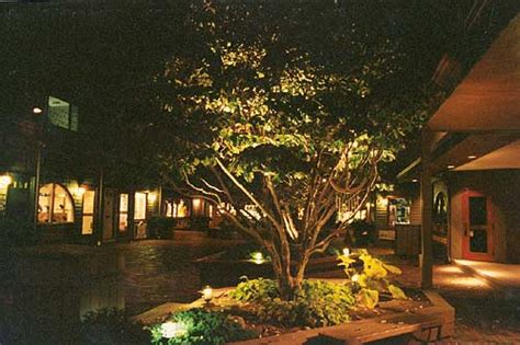 Landscape Up Lights - uplighting for an outdoor reception advice project wedding forums