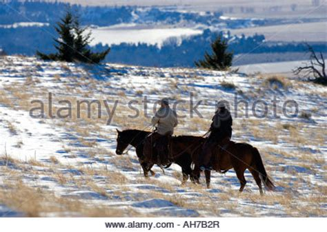 Ah Hoy Ride A Pony Theitlistscom by Cowboy On Horseback In The Snow On A Working Ranch