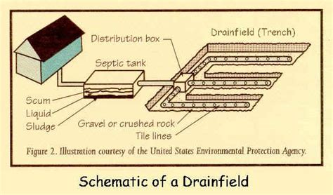 septic tank diagram drain field septic system components