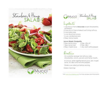 vegetable salad ingredients and procedure