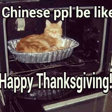 Happy Thanksgiving Memes - chinese people be like funny stuff pinterest humor