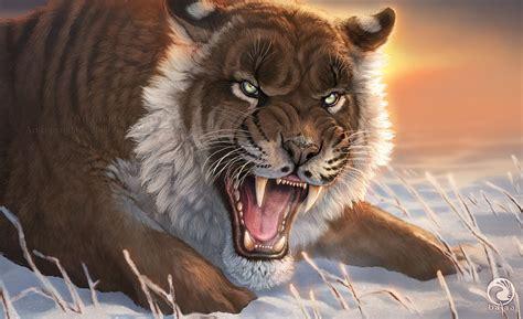 imagenes de leones vs tigres espectacuclares imagenes leones tigres lobos im 225 genes