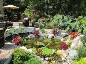 Water gardens pond contractor backyard pond custom water feature